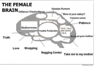know_female_brain_Funzug.org_01